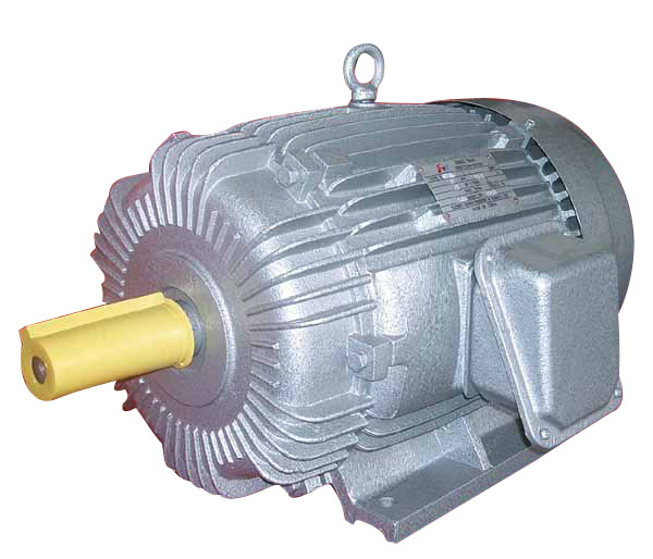 WHAT IS SPLIT TYPE INDUCTION MOTOR ? Buy Online at low price in India ...